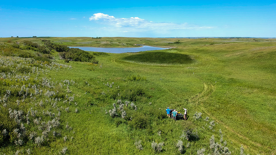 aerial view of the Prairie Pothole wetland region in ND